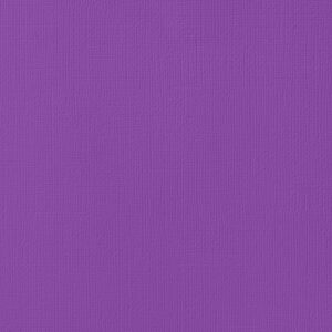 AC PURPLES 71010 AC Cardstock 12x12 Textured - Grape (1 Sheet)