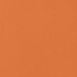 AC ORANGES 71031 AC Cardstock 12x12 Textured - Apricot (1 Sheet)