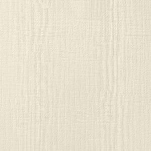 AC NATURALS 71041 AC Cardstock 12x12 Textured - Vanilla (1 Sheet)