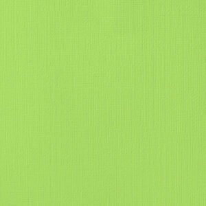 AC GREENS 71061 AC Cardstock 12x12 Textured - Key Lime (1 Sheet)