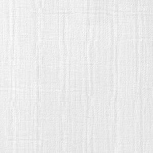 AC NEUTRALS 71081 AC Cardstock 12x12 Textured - White (1 Sheet)