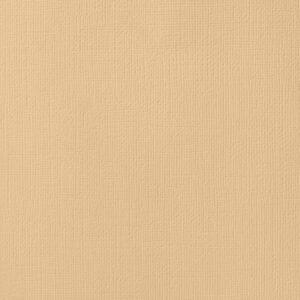 AC NATURALS 71503 AC Cardstock 12x12 Textured - Latte (1 Sheet)